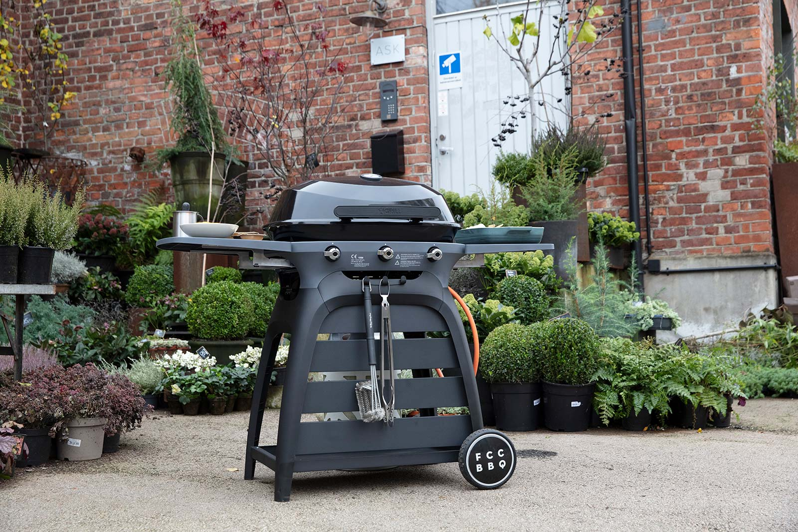 FCCBBQ Gas Grills